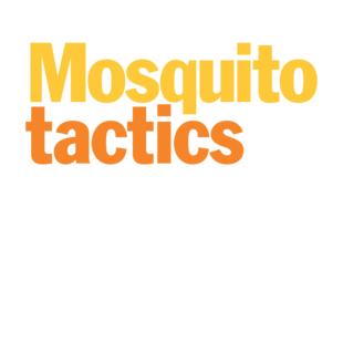 Mosquito Tactics